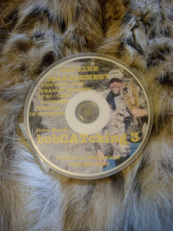 Steve Wood Bobcatchin Part 3 DVD
