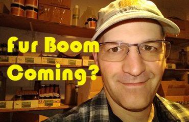 Fur Boom Coming?